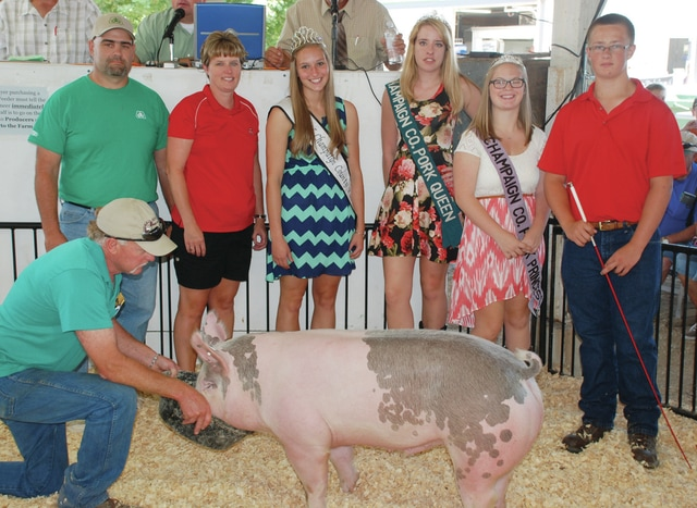 Colby Strader's Reserve Champion Lean Gain Barrow sold for $200 to Case Family Farms.