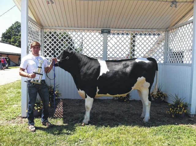 Kaleb Romero, Dairy Steer Senior Showmanship Champion, Dairy Steer Showman of Showman Champion