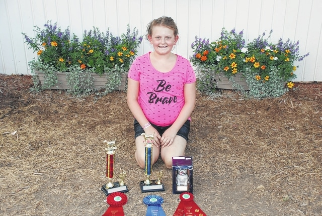 Allison Pinet earned Champion Junior A Grooming and Handling, Reserve Champion Sub-Novice A Obedience and 2nd in Dog Care.