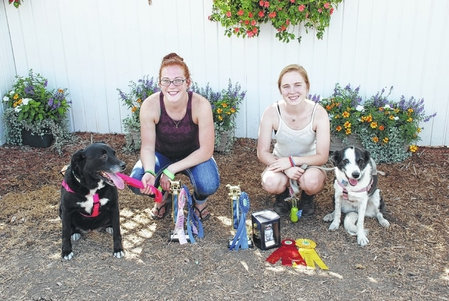 Emily Wilson won Champion Graduate Novice A Obedience and 5th place in Showmanship, while Helen Boeck won Champion Graduate Novice B Obedience, 2nd place in Dog Care and 3rd place in Grooming and Handling.