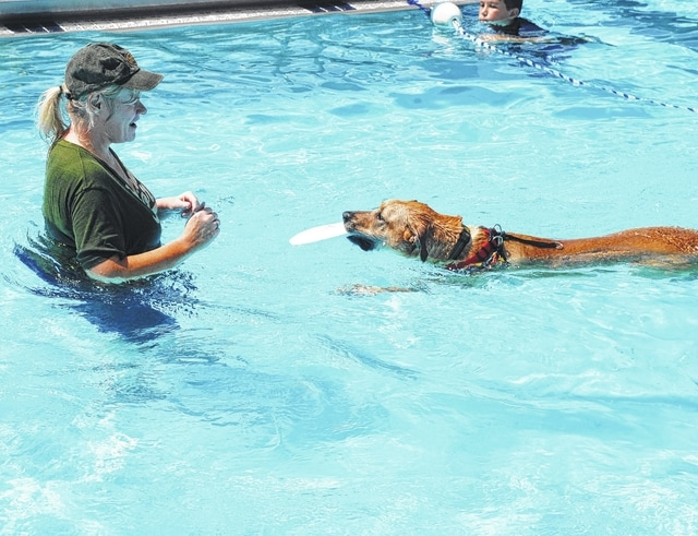 The dog days of summer are behind us now that the Urbana City Pool has closed. Before the pool was drained for the season, it was opened up for the annual Fido Swim event on Sunday. Local dog owners were invited to enjoy a swim with their pets. The weather was sunny and warm for the event. In the photo, Karen Zeigler of Urbana enjoys a water game with her dog Olive.