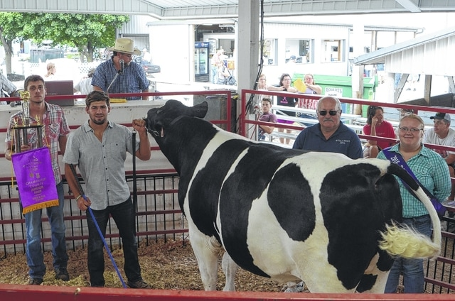 Kaleb Romero's Champion Dairy Steer sold for $2,000 to a syndicate of buyers.