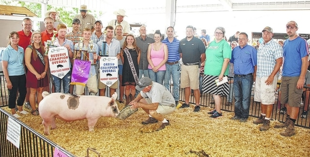 Jack Wing's Champion Market Overall Barrow pig sold for $3,800 to a syndicate of buyers.
