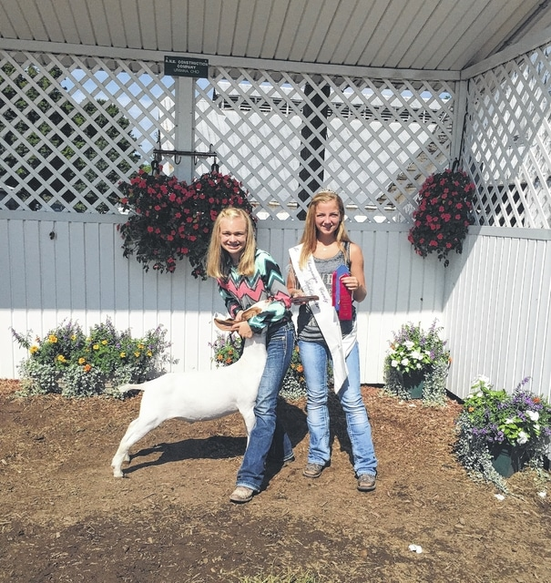 Emmalee Cecil, goats, Jackpot reserve lightweight champion, Reserve division 1 champion 4-h show, 2nd place in Skillathon