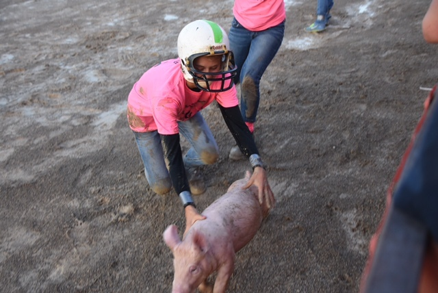 Kristin Bailey catches a pig at the Scramble for the 2017 fair.