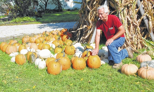 David Hickman of southern Mad River Township arranges the wide variety of pumpkins he has for sale at Walnut Ridge Farm. The farm is located on Valley Pike near County Line Road.