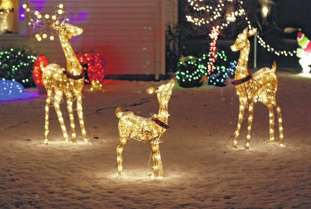 """White reindeer """"graze"""" in the front yard of this Fountain Circle home."""