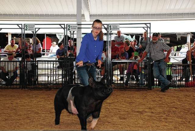 Cable resident Summer Doty, a 2017 graduate of Triad High School, shows her Grand Champion Overall Market Gilt in the Swine Show Arena on Monday at the Champaign County Fairgrounds.