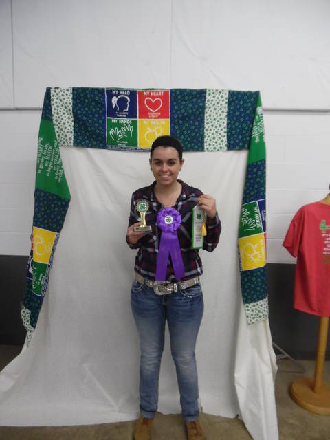 Taylor Laughman-Cake Decorating Senior Beginner, State Fair Delegate & Rosette