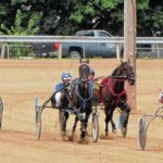 Harness racing is back at the fair