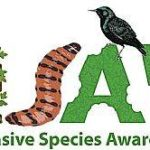 Use these tips to curb invasive species