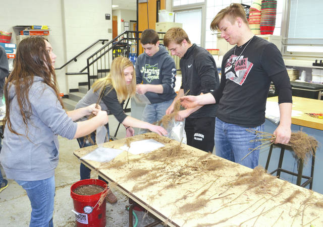 Graham High School students in Mrs. Dawn Wallace's agriculture class (from left to right) senior Cheyenn Masters, senior Renae Mefford, junior Lane Hollingsworth, sophomore Tylar Bailey and sophomore Hunter Mays assist in dividing seedlings for the Champaign Soil and Water Conservation District's annual bare-root seedling sale. According to District Technician Dale Goddard there are about 5,000 total seedlings including paw paw, lilac, red bud, hickory and red maple trees, about 600 of which will go to area second graders in five Champaign County schools.