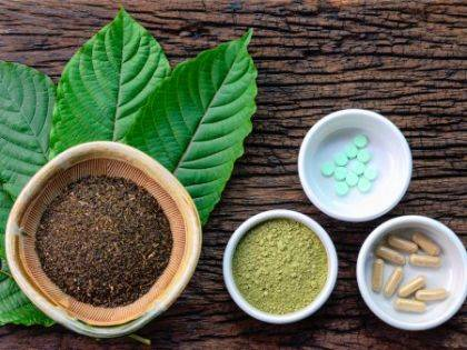 Mitragyna speciosa (kratom) leaves are shown in powder form, capsules and tablets.