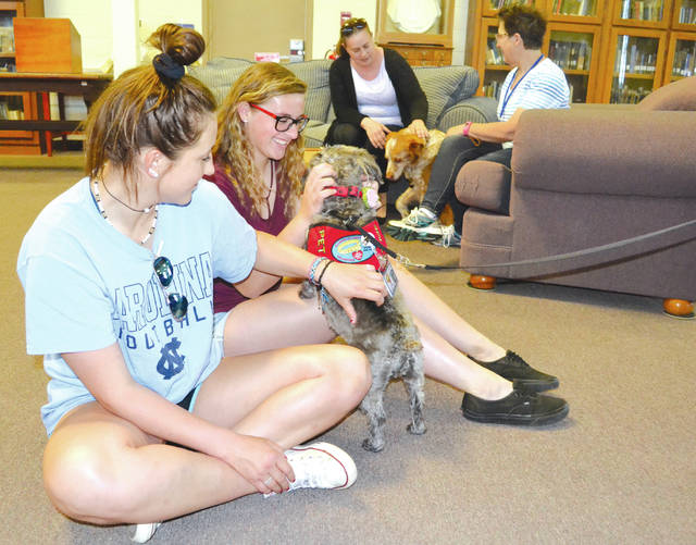 Urbana University freshmen Brittney Bonno, left, and Kayleigh Pate, right, play with Sassy Belle at the UU library on Tuesday as part of the Alliance of Therapy Dogs outreach. The dogs appear during exam weeks to soothe student nerves.