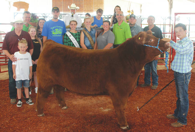 Andrew Lewis sold his Champion Cattleman's market steer to a syndicate for $1,750.
