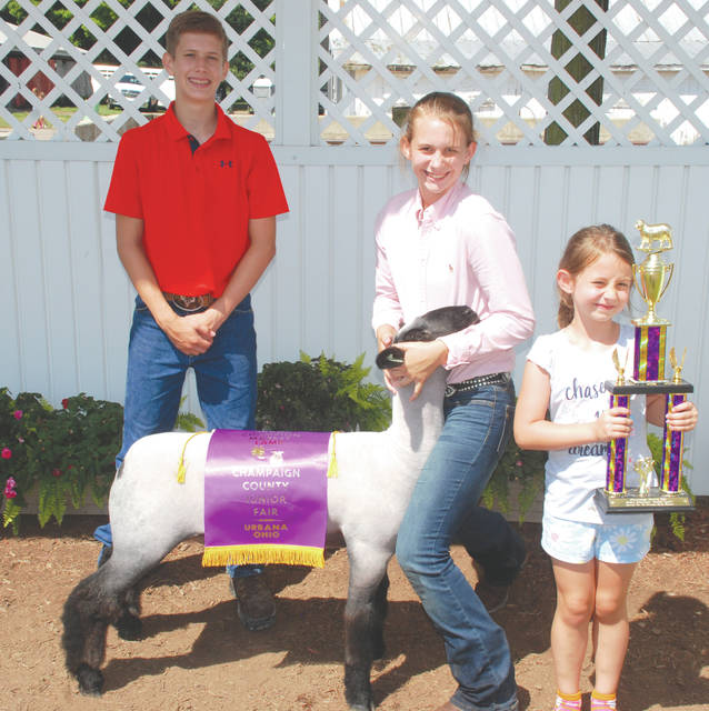 Ava Prince, Junior Fair Grand Champion Market Lamb