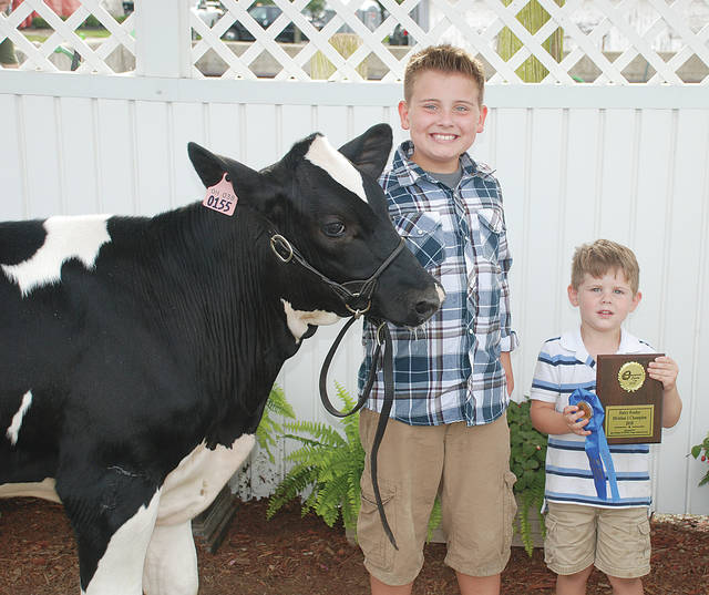 Cooper Love: Dairy Feeder Division II Champion; Class Winner